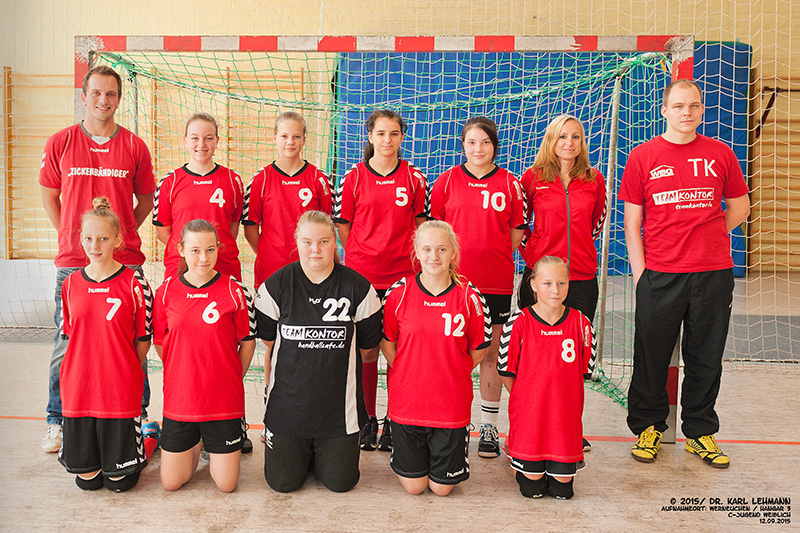 Mannschaftsfoto weibliche Jugend D | 2015 /16